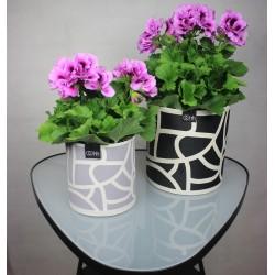 Graphic Flowerpot