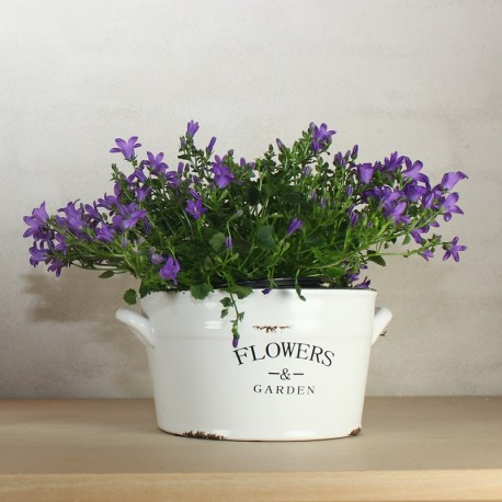 White Flowerpot with Text