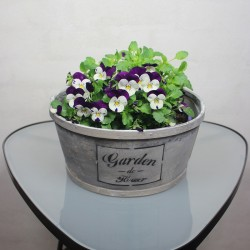 Flowerpot with text