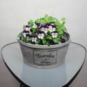 Flowerpot with text